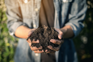 Gardening Tips And Tricks: Hands holding soil
